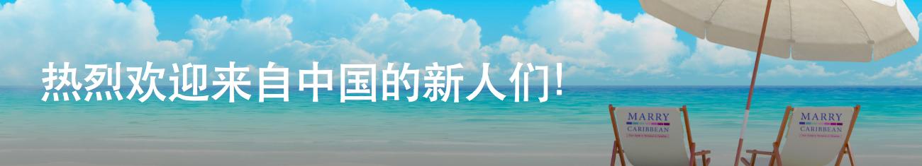 mc-chinese-banner